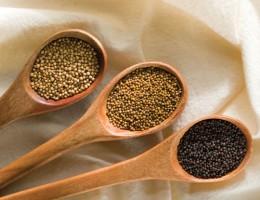 Mustard_seeds
